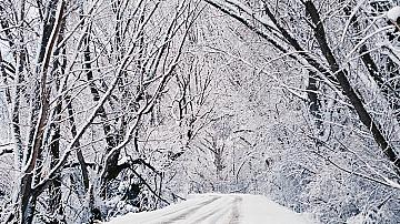 Движението на влаковете в няколко участъка на страната е прекъснато поради тежките зимни условия